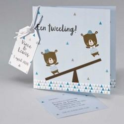 Geboortekaartje Tweeling - jongen/jongen