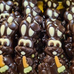 Paascaracque Fondant chocolade - Haas