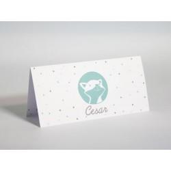 Cesar cactus geboortekaart