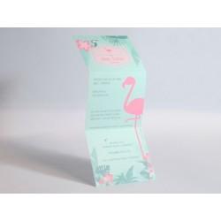 Geboortekaart Flamingo Miami